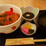 寺泊きんぱちの湯ブリカツ丼
