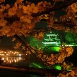 上越市高田城百万人観桜会2012夜桜高田城三重櫓