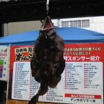 日本海糸魚川荒波あんこう祭り2013糸魚川会場あんこう吊るし