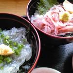 静岡県富士市道の駅富士川楽座生しらす丼と生さくらえび丼