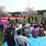 平牛さくら祭り2014糸魚川高校バンド