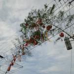 寺町琴平社宵祭り歩行者天国