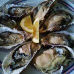 長崎県新上五島町の真牡蠣