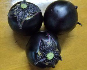 糸魚川越の丸茄子